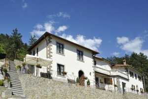 Casa Ricci apartment in the National Casentino Forest Park V.11.02
